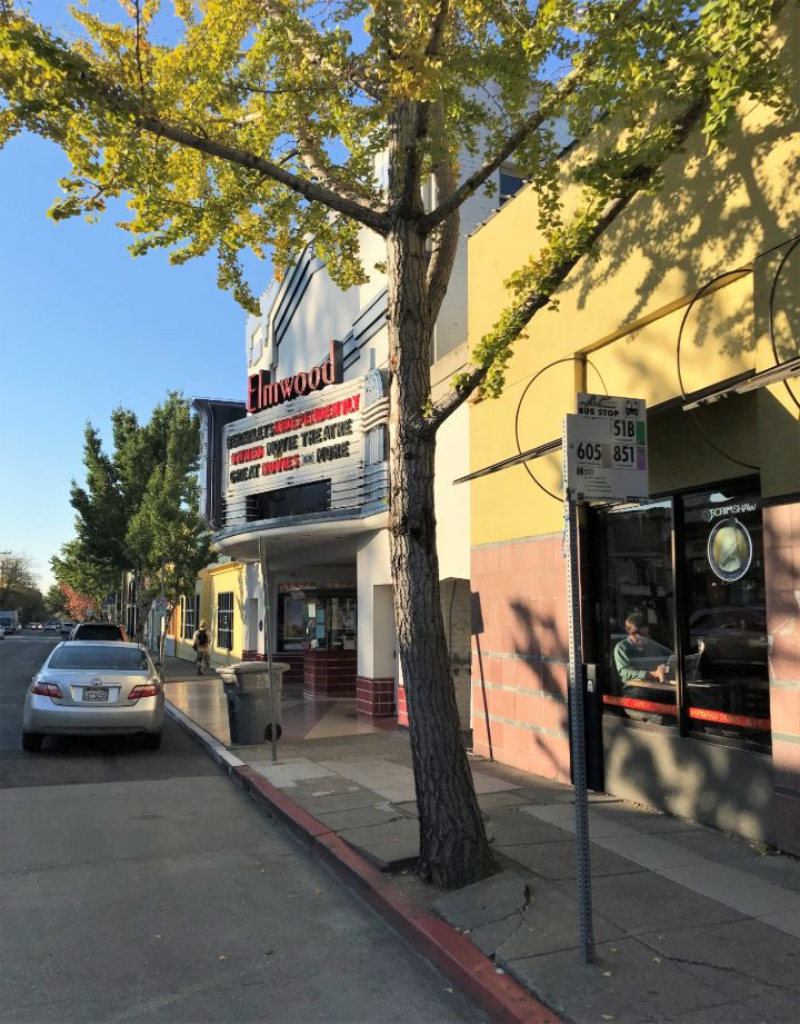 bus stop and loading zone outisde the Elmwood Cinema on College Avenue